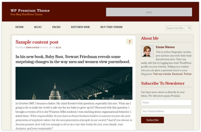 wp premium free wordpress theme